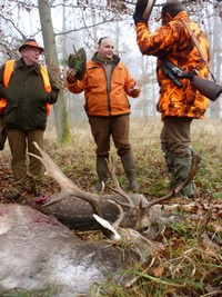 Big game of hunt  in Poland : National Forests in Zamrzenica